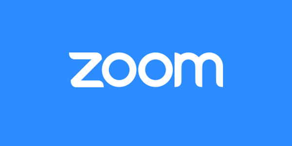 Zoom Meetings Pro License Annual 1 Year
